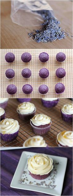 Lavender Cupcakes with Honey Frosting These cupcakes are inspired by my favorite little ice cream shop in the Wallingford area of Seattle: Molly Moon's. I always come back to their Honey. - Yummy Recipes: Lavender Cupcakes with Honey Frosting recipe Brownie Desserts, Just Desserts, Delicious Desserts, Yummy Food, Delicious Cupcakes, Health Desserts, Frosting Recipes, Cupcake Recipes, Cupcake Cakes