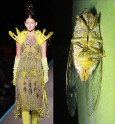 garment inspired from macro flies - Google Search