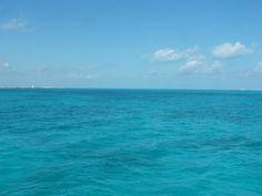 ¡Azul!  Playa del Carmen. Solidaridad, Quintana Roo