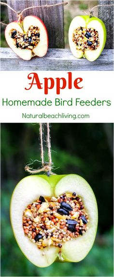 How to Make Apple Birdseed Homemade Bird Feeders Apple Bird Feeders Easy Homemade Bird Feeders Great Fall Craft for Kids Homemade Bird Treats Apple Activities Fall Crafts For Kids, Crafts To Make, Fun Crafts, Paper Crafts, Bird Crafts Preschool, Bird Seed Crafts, Garden Crafts For Kids, Garden Kids, Creative Crafts
