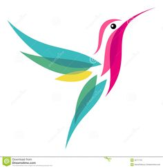 hummingbird illustration - Google Search