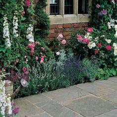 Traditional & Cottage Garden Ideas