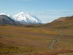 The long and winding road through Denali National Park