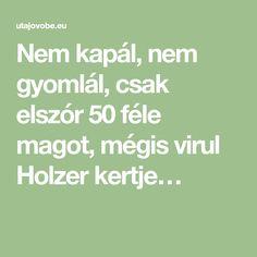 Nem kapál, nem gyomlál, csak elszór 50 féle magot, mégis virul Holzer kertje…
