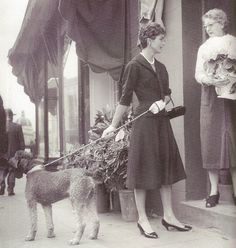 The Senator's wife with Gally, stopping to speak with a Georgetown shopkeeper.