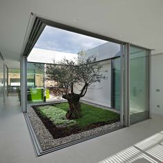 Discover amazing courtyard designs from all over the world, with indoor trees, outdoor furniture and lighting, retractable walls, patios and atrium ceilings. Interior Garden, Home Interior Design, Interior And Exterior, Interior Doors, Modern Interior, Kitchen Interior, Room Interior, Courtyard Design, Garden Design