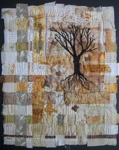 Secrets of Old Trees by Meg Fowler