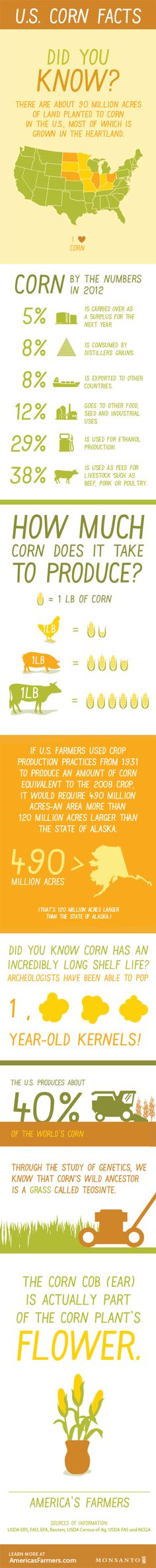 Check out this cool infographic on US Corn Facts!! #AmericasFarmers