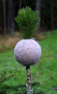 HAVUPALLOPUU   Perinteisen havupallon voi tehdä myös puun muotoon.  Muistathan, että havujen kerääminen ei kuulu jokamiehen oikeuksiin. ...