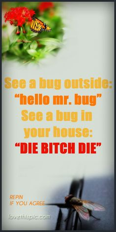 Bugs funny quotes quote lol funny quote funny quotes humor