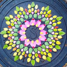 "... Kathy Klein offers her ""Flower Mandalas"", a series of geometric shapes inspired from symbols of Buddhist meditation, made entirely with flowers of ..."