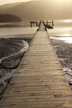 A picture perfect jetty, in the Marlborough Sounds, New Zealand. Adventure Time, Adventure Travel, Marlborough New Zealand, Marlborough Sounds, New Zealand Landscape, South Island, Pacific Ocean, Beautiful Beaches, Scenery