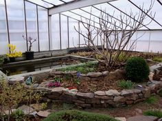 The Invisible Urban Homestead: Field Trip: Partially Underground Greenhouse