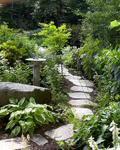 Designing with Stone    Rock can make digging difficult, but it ensures a steady supply of stone for working into garden design, as shown in this simple path cutting through a perennial bed.