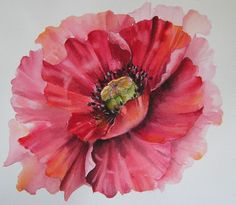 Another version of a poppy - Mixed Media | Carole Swingler | Painters Onlinewww.painters-online.co.uk