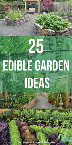 25 Edible Garden Ideas -- grow herbs and vegetables no matter the size of your yard @Remodelaholic .com .com .com .com .com