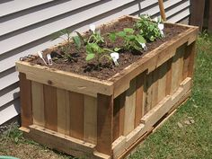 Pallet reuse. Raised garden box. I bet it would be neat to add casters in order to move it around.  I am so LOVING all these pallet re-uses!!!