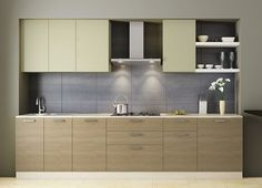Modular Fennel Straight Kitchen Design. Pic Source-Modspace