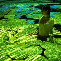 Durant le salon du design de Milan, le collectif teamLab, dont nous vous avons déjà parlé, a présenté une installation interactive baptisée « Harmony ».  Le public est plongé dans une expérience sensorielle où il peut se mouvoir dans un décor qui l'immerge dans des paysages naturels japonais comme les rizières ou les lacs.
