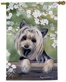 Yorkshire Terrier, Yorkie Gifts, Art, Cards, Clothing