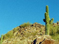 #Arizona #Sky and #Desert #Art #Print