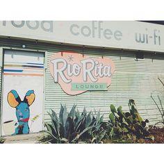 food-coffee-wifi
