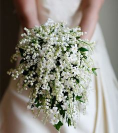 """Lily of the valley flowers represent a """"return of happiness"""" for #Dutch brides and grooms."""