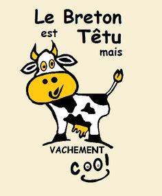 OUAIS sympa le breton ! | Finistère Bretagne #myfinistere