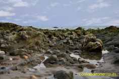 Rocas Playa Conil