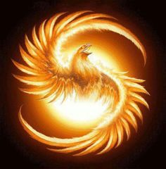 Be like the phoenix and rise from whatever ashes cover you