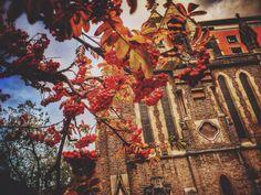 Loving the November colors in London!