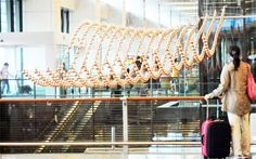 20 Airport Art Installations That Wow Travelers
