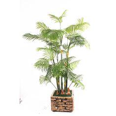 TCB-08 170CM Artificial Hawaii kwai Areca Palm Small Palm Trees, Small Palms, Hawaii, Plants, Plant, Hawaiian Islands, Planets