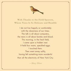 mary oliver quotes about nature - Yahoo Image Search Results Poem Quotes, Words Quotes, Wise Words, Sayings, Mary Oliver Quotes, Collateral Beauty, Poem A Day, Nature Quotes, Beautiful Words