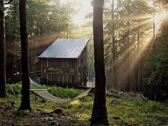 Scenes from Beaver Brook - A Woodland cabin shared by friends in Sullivan County, NY