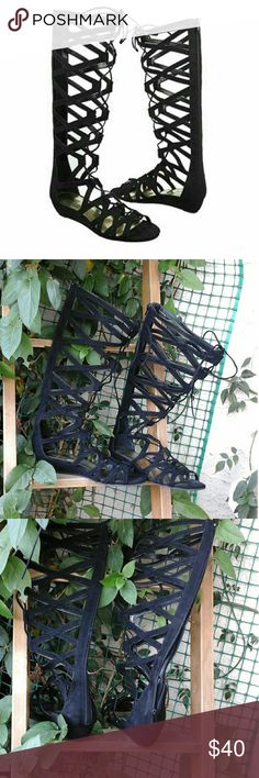 CARLOS KLEO GLADIATOR SANDALS Used but alot of life to them yet Kleo Gladiator SandalBlack Suede Knee High Gladiator Sandals Carlos Santana Shoes