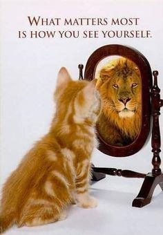 A.A. Milne art cat lion see yourself mirror quote