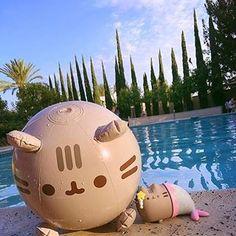 Summer can't come soon enough for us! Pusheen Love, Pusheen Cat, Pusheen Pillow, Pusheen Stuff, Pusheen Stormy, Pusheen Birthday, Nyan Cat, Kawaii Drawings, Cute Animals