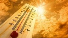 June Heatwave In Europe Causes Panic Everywhere? We Brave A Year Of It without Panic