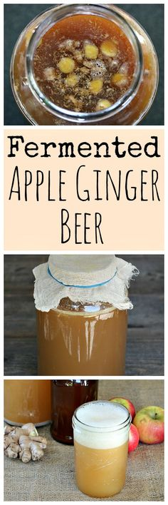 Make this fermented apple ginger beer during apple season for a nice fall treat! It's made with a ginger bug and is delicious!