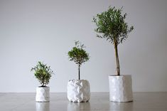 Ame Design - amenidades do Design . blog: Vaso que cresce com a planta
