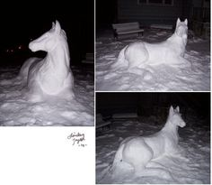 Snow Horse! So Cool.