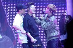 triple kim Double B, Hanbin, Bobby, Kpop, Songs, Quail, Concert, Type, Artist