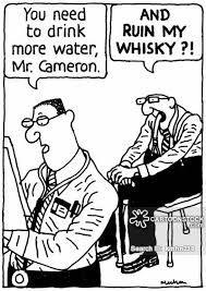 binge drinking cartoons and comics - Google Search