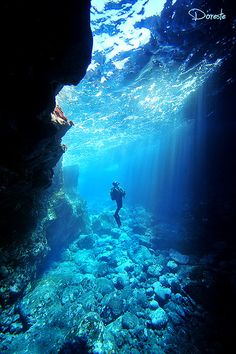 5 Key Tips Make You a Better Scuba Diver - How to hold your breath Free diving is more than a sport or a discipline, it is a lifesty. Sea Diving, Best Scuba Diving, Cave Diving, Diving Suit, Horse Diving, Diving Pool, Diving Helmet, Scuba Diving Gear, Underwater Photos