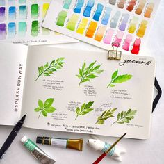 "1,144 Likes, 28 Comments - OonhimWatercolour • Lettering (@splashrunway) on Instagram: ""COLOUR STUDY for leaves • used various palettes to mix two of my favourite colours: sap green and…"""