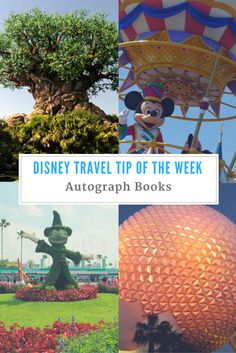 Disney Travel Tip of
