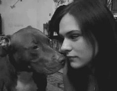 Human and her Pit Bull have the most adorable exchange » DogHeirs | Where Dogs Are Family « Keywords: Pit Bull, kiss, GIF