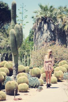 Huntington Cactus Garden- have a pix of Asher sitting next to those cacti Palm Desert, Desert Dream, Dry Desert, Desert Life, Cacti And Succulents, Cactus Plants, Succulent Ideas, Cacti Garden, Bohemian Girls