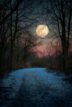 Moon 🌙 rising